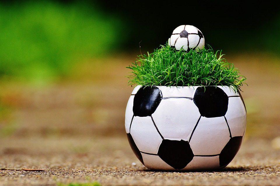 Den Fußball Feiern – Aber Nachhaltig