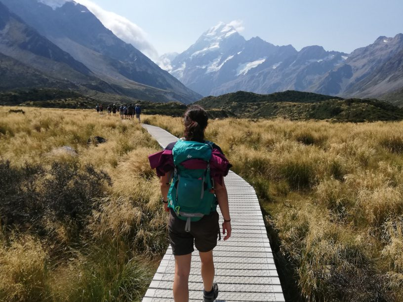 Outdoor-Tipps: Wie Verhalte Ich Mich Richtig In Der Natur?