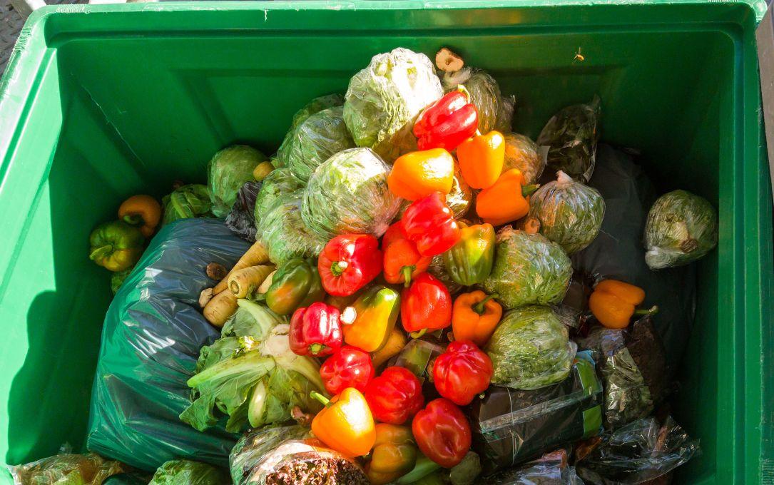 No-Food-Waste-Startups: Ideen Für Den Nachhaltigen Lebensmittelkonsum