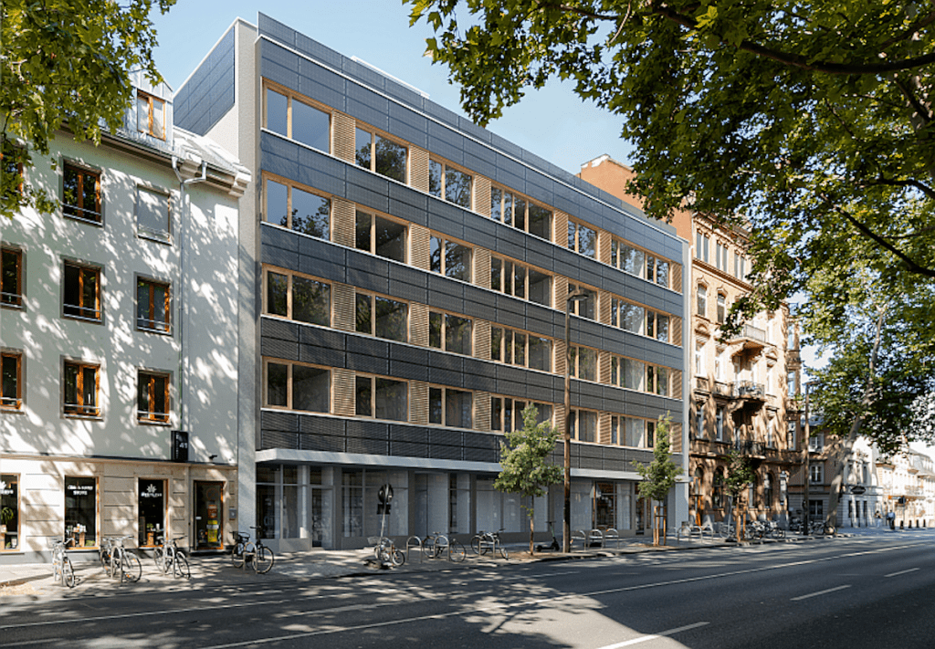 Domblick Mainz