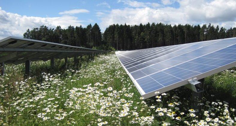 Solarpark_Neuhausen